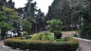 Клумбы перед дворцом Кичкинэ