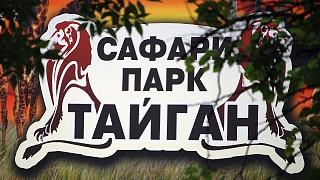 "Сафари-парк ""Тайган"" – новая жемчужина Крыма"