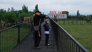 Обзорные мостики для посетителей сафари-парка