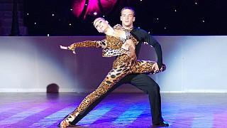 Танец кошачьих