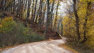 Осенью дорога к пещере очень живописна