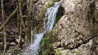 Богатое ущелье, река Суаткан