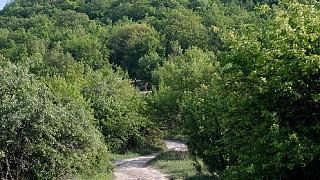Дорога на Тепе-Кермен