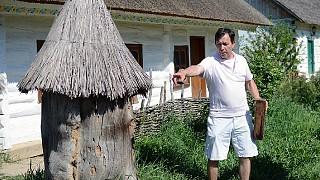Старинный улей, сделанный из дупла дерева
