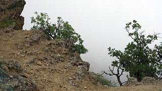 Виды Карадага