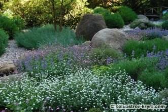 Сад ароматов в парке