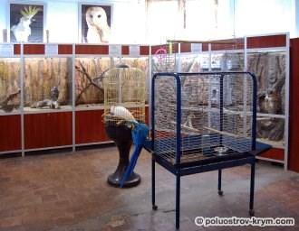 Террариум на Историческом бульваре. Севастополь. Автор фото Ольга Иутина